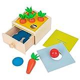 lahomia Materiales Sensoriales Montessori Caja a Juego de Bolas Juguetes Educativos para...