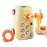 BBLIKE Juguetes Montessori educativos Juegos niños 2 3 4 años Bebes, 3 en 1 Juguetes...