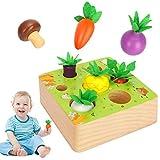 Sinwind Montessori Juguetes Niños Aprendizaje, Juegos Educativos de Granja Infantiles...